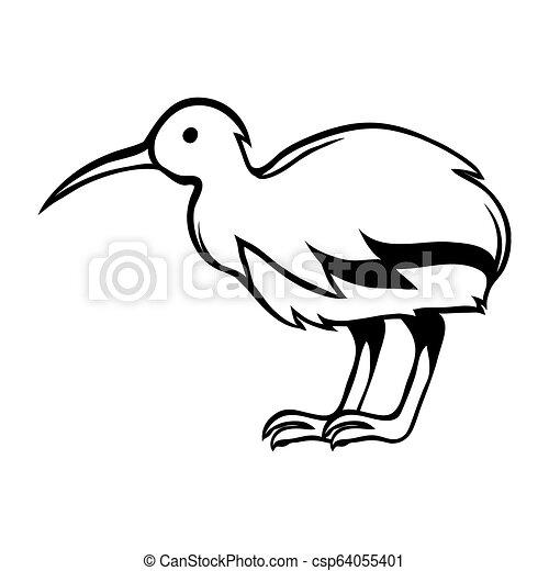 Black And White Bird Kiwi Stylized Engraving Illustration