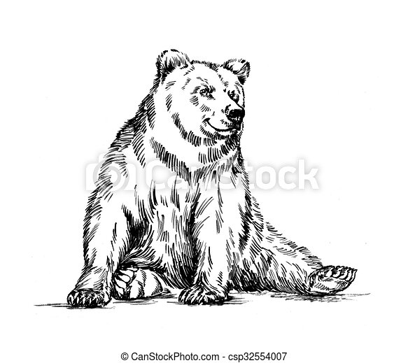 black and white engrave isolated bear - csp32554007