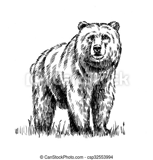 black and white engrave isolated bear - csp32553994