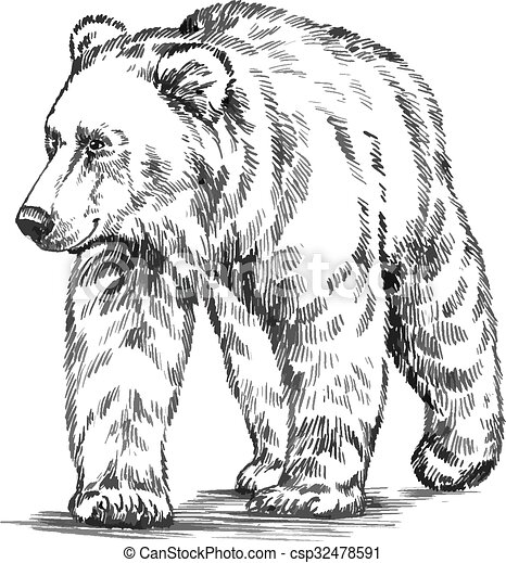black and white engrave isolated vector bear - csp32478591