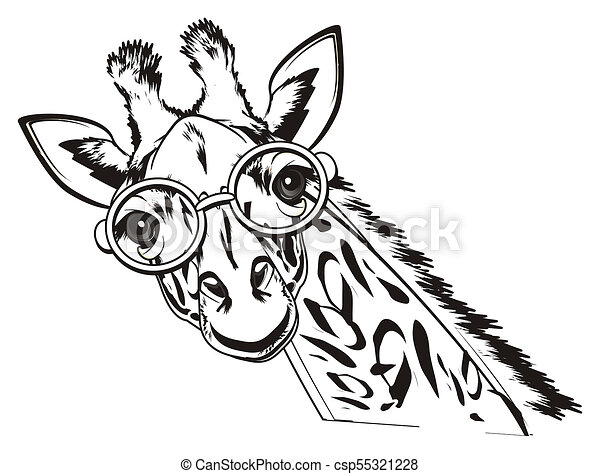 Black And White Giraffe With Glasses Not Colored Giraffe With Round
