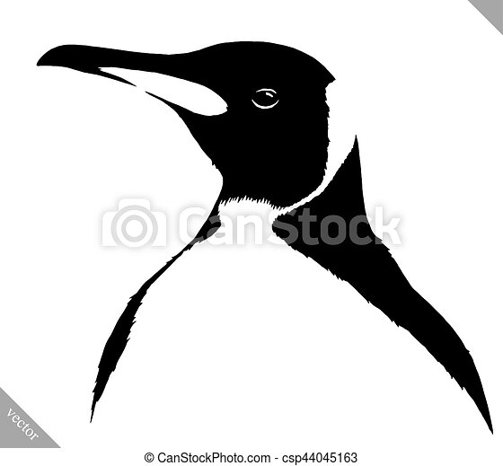 black and white linear paint draw penguin vector illustration black