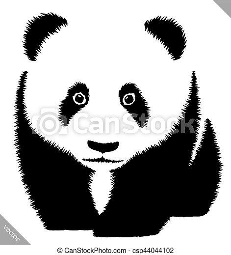 Black And White Linear Paint Draw Panda Vector Illustration Black