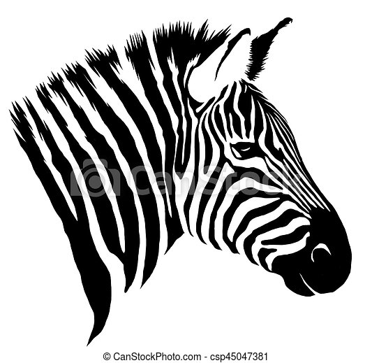 Black And White Linear Paint Draw Zebra Illustration Black And