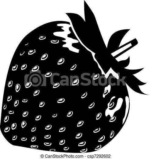Black-and-white ripe strawberry - csp7292602