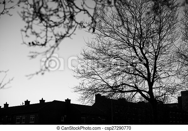 Black and white trees silhouettes - csp27290770