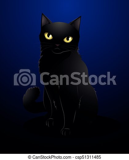 black cat - csp51311485