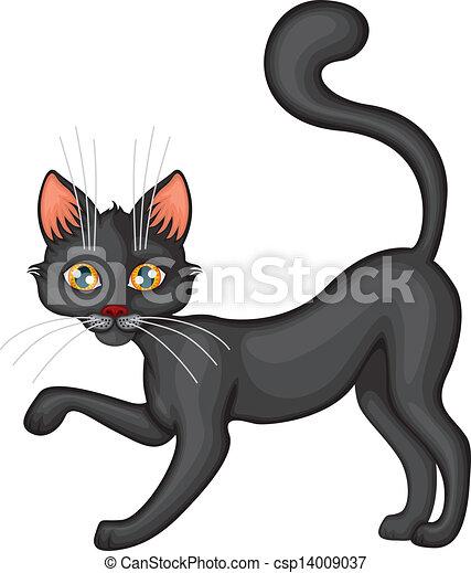 Black cat - csp14009037