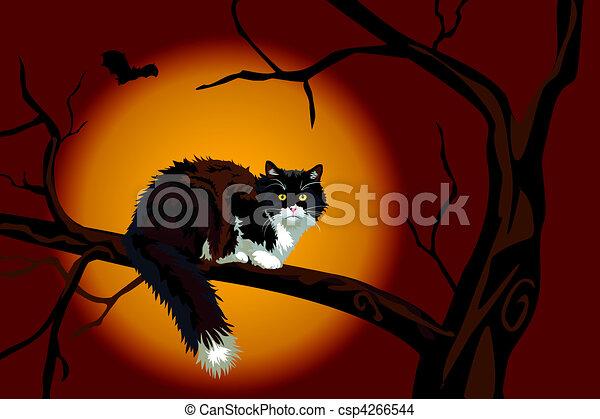 Black cat on dead branch on Halloween night - csp4266544