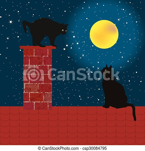 Black cats on the roof - csp30084795