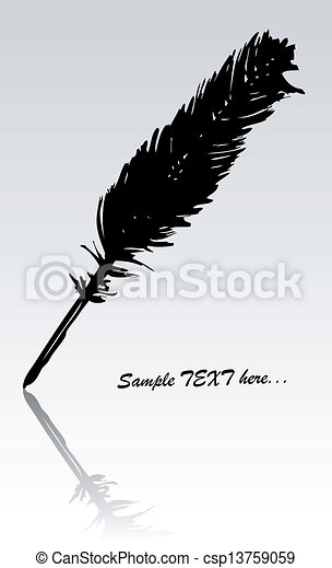 black feather - csp13759059