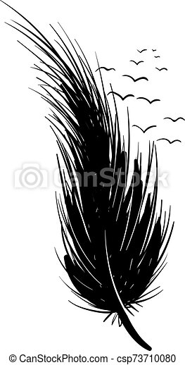 Black feather, illustration, vector on white background. - csp73710080