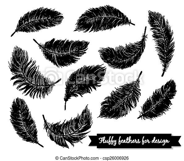 Black feathers - csp26006926