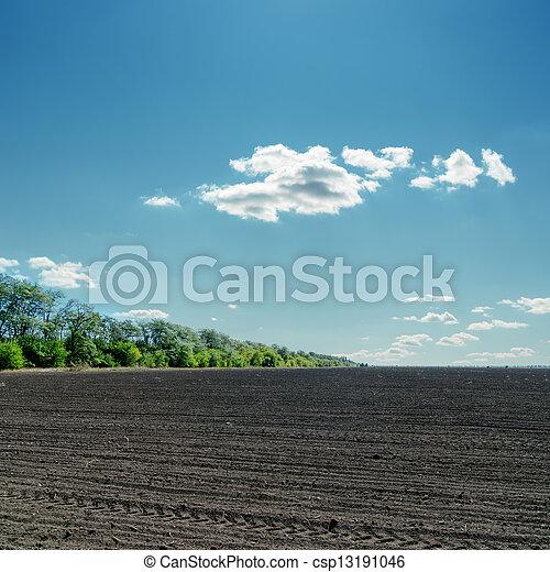 black field under cloudy blue sky - csp13191046