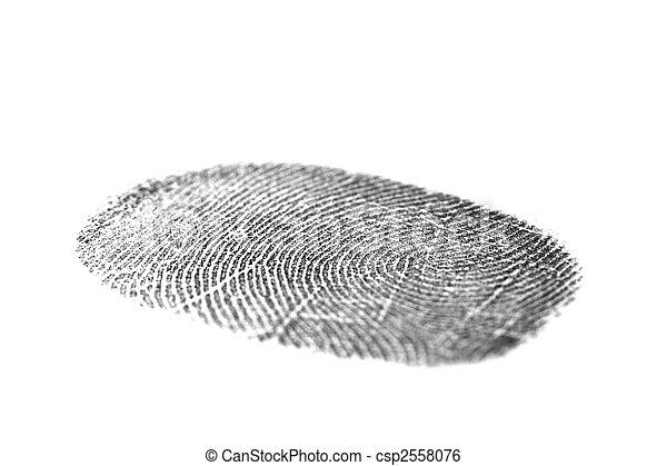Black fingerprint isolated on white - csp2558076