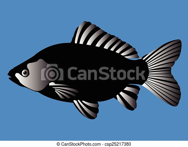 black fish - csp25217380