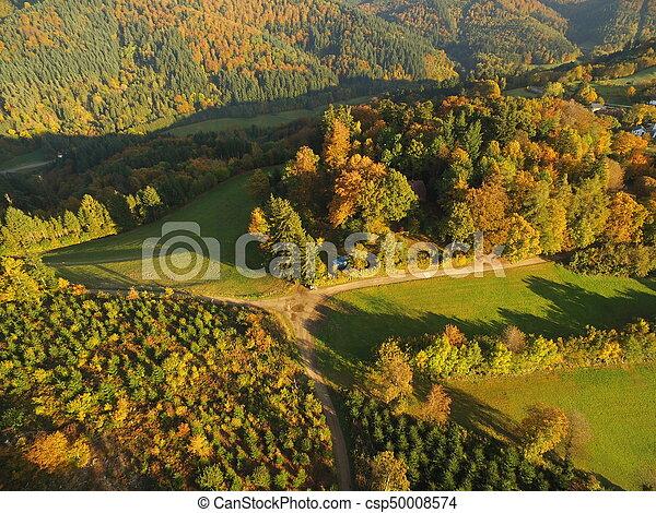 black forest at autumn - csp50008574