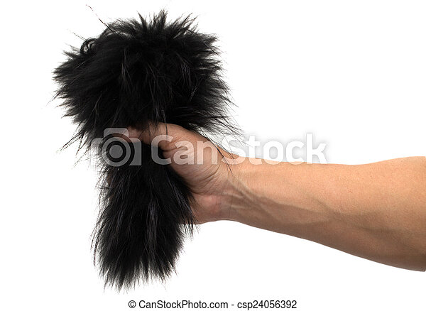 black fur in his hand on a white background - csp24056392