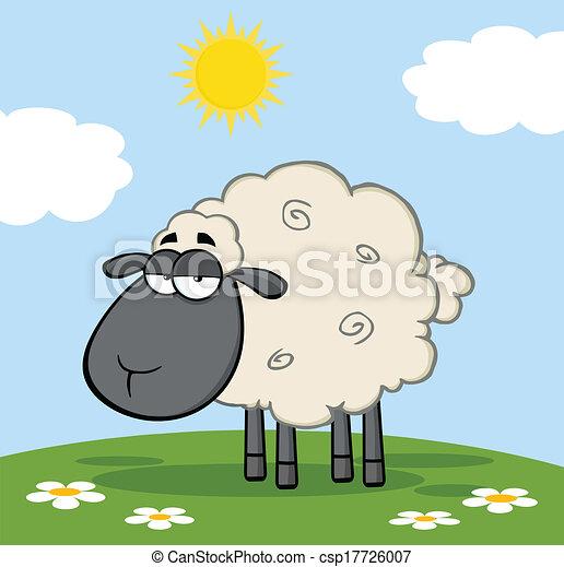 Black Head Sheep On A Meadow - csp17726007