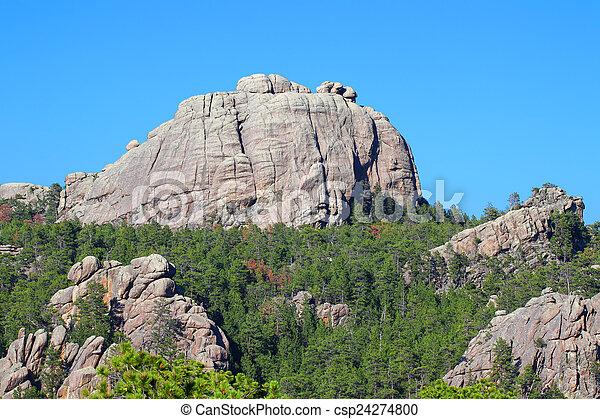 Black Hills Landscape South Dakota - csp24274800
