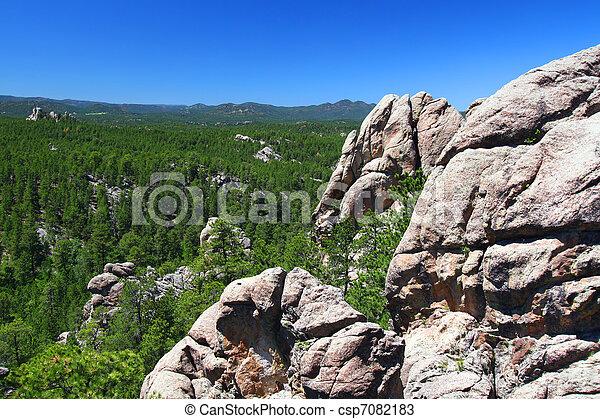Black Hills National Forest - csp7082183