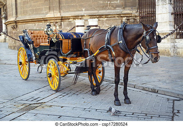 Black horse and traditional tourist carriage in Sevilla - csp17280524