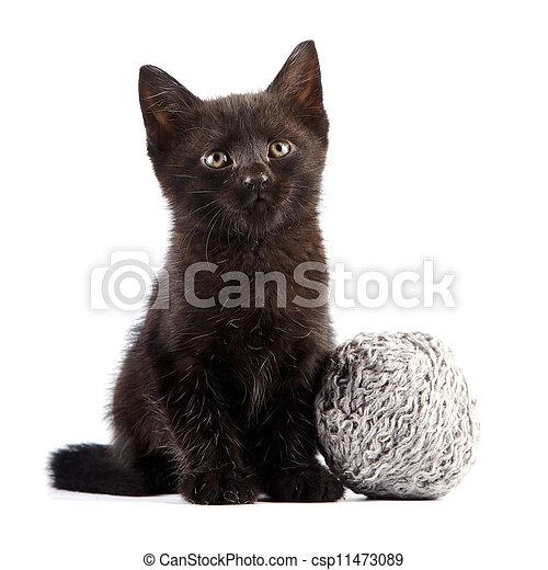 Black kitten with a woolen ball - csp11473089