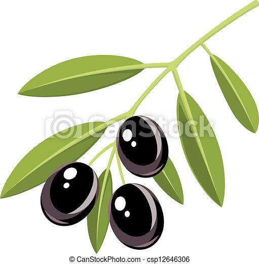black olives branch of black olives with leaves rh canstockphoto com clipart olive gratuit olive clipart black and white