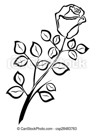 Black Outline Of Single Rose Flower Isolated On A White Background