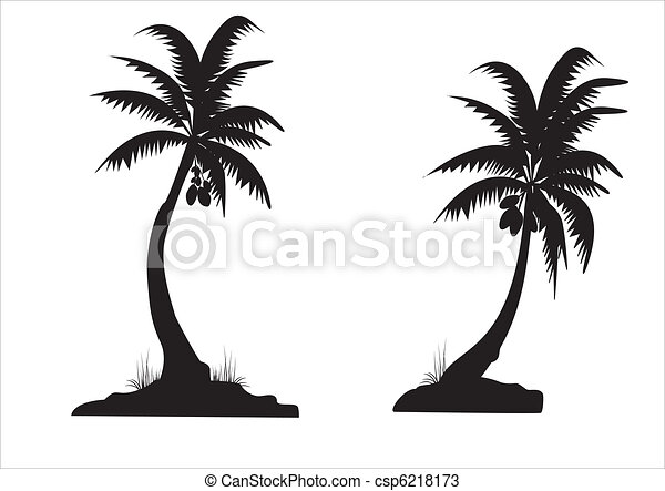 Black Palms Two Coconut Palms On White Background