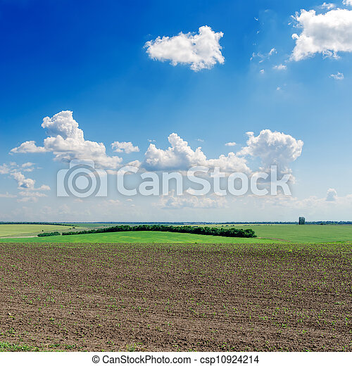 black ploughed field under deep blue sky - csp10924214