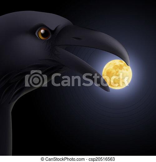 Black raven - csp20516563