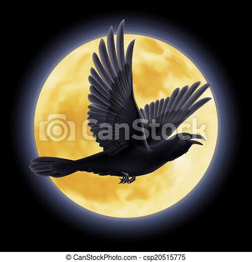 Black raven - csp20515775