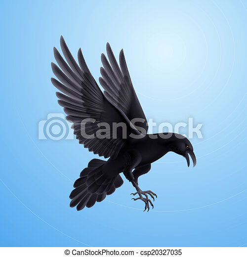 Black raven on blue background - csp20327035