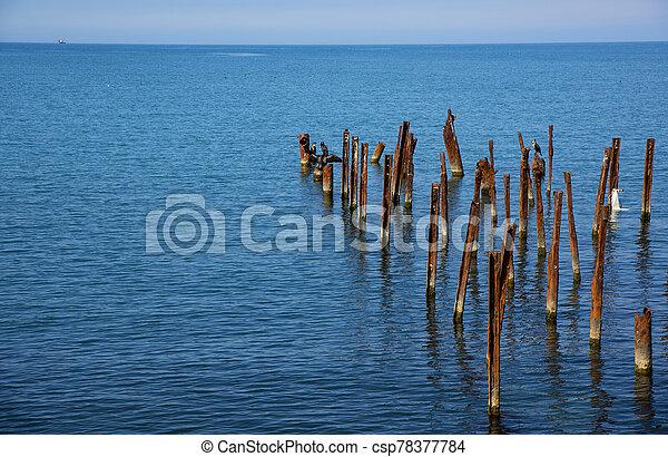 Black sea coast - csp78377784