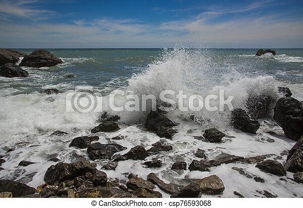 Black Sea, Crimea - csp76593068