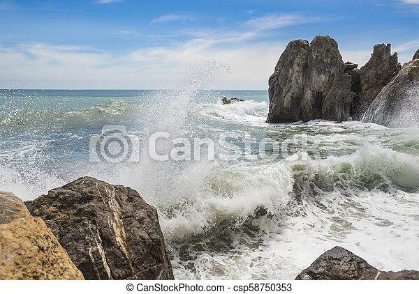 Black sea, Crimea - csp58750353