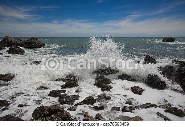 Black Sea, Crimea - csp76593459
