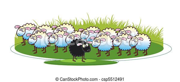 Black Sheep - csp5512491