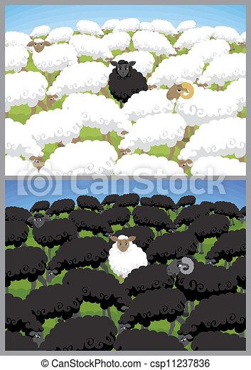 Black Sheep - csp11237836