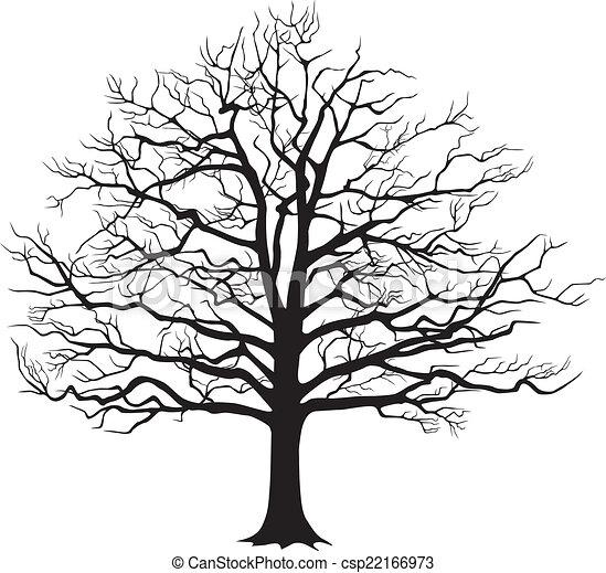 Black silhouette bare tree . Vector illustration - csp22166973