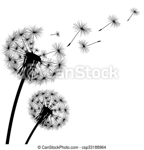black silhouette with flying dandelion buds on a white background - csp33188964