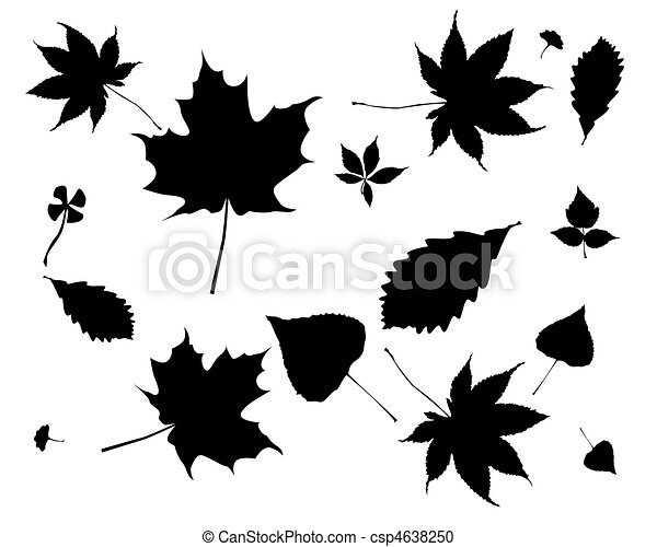 Black silhouettes of leaves - csp4638250