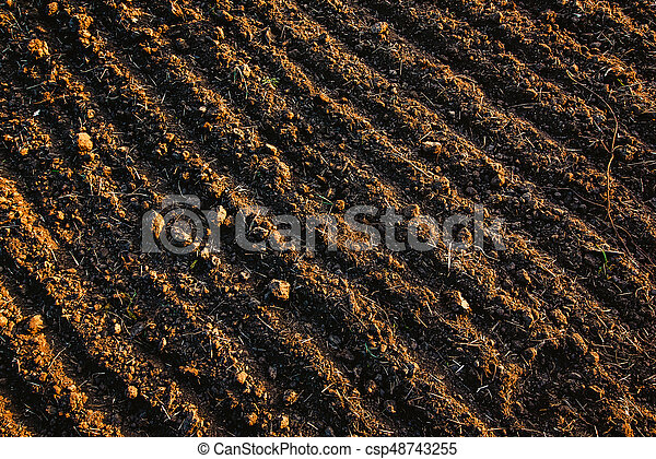 Black Soil Plowed Field Earth Texture Rustic Background