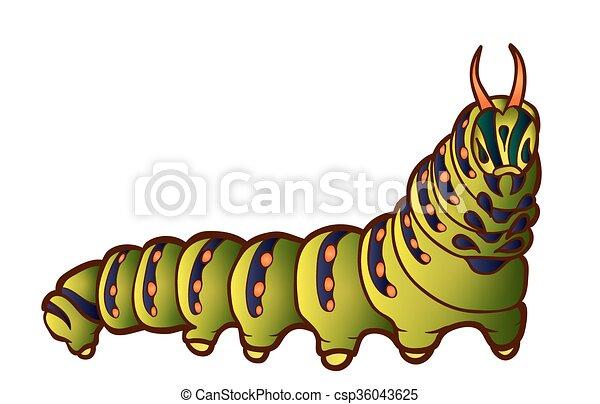 Black Swallowtail caterpillar - csp36043625