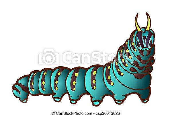 Black Swallowtail caterpillar - csp36043626