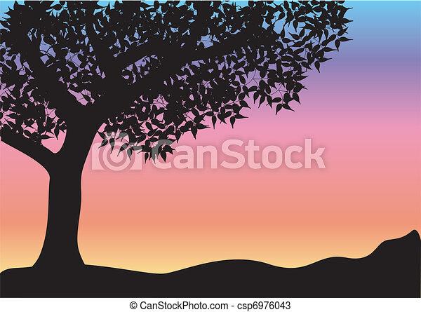 black tree - csp6976043