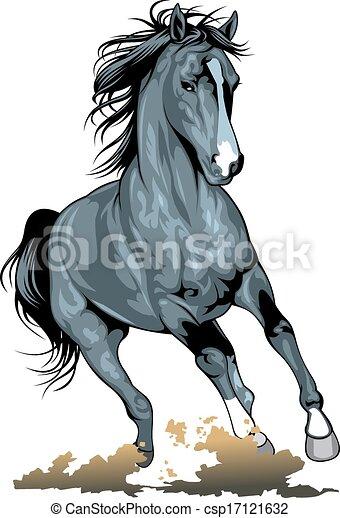 black wild horse - csp17121632