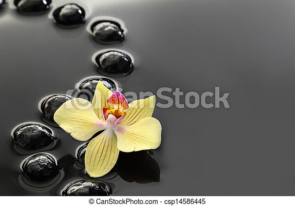 Black Zen stones and orchid on calm water background  - csp14586445