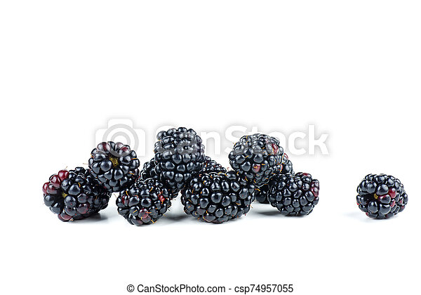 Blackberries isolated on white background - csp74957055